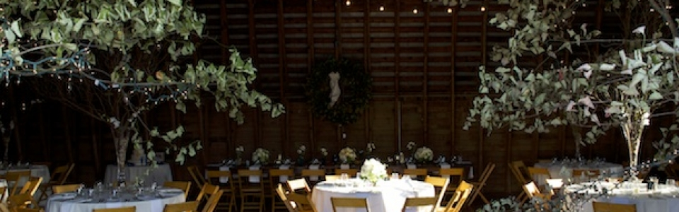 304-Barn-Wedding-Verulam-960x300_c
