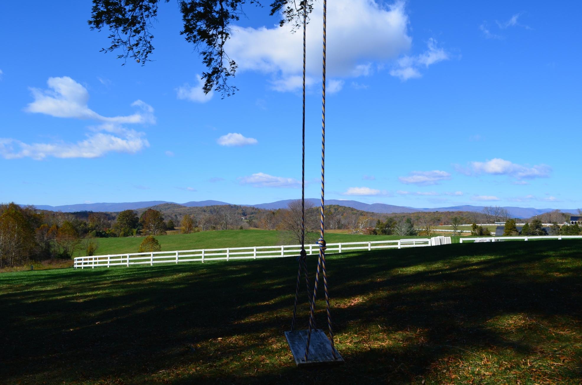 Swing 2 Verulam Charlottesville Wedding