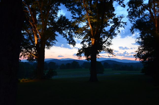 Virginia-Charlottesville-Estate-Wedding-Sunset-with-Trees-copy