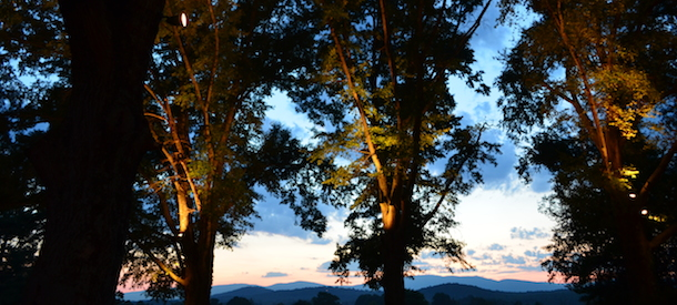 Virginia-Charlottesville-Estate-Wedding-Tree-Lights