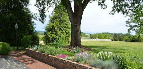 verulam-farm-estate-gardens-charlottesville-virginia-100
