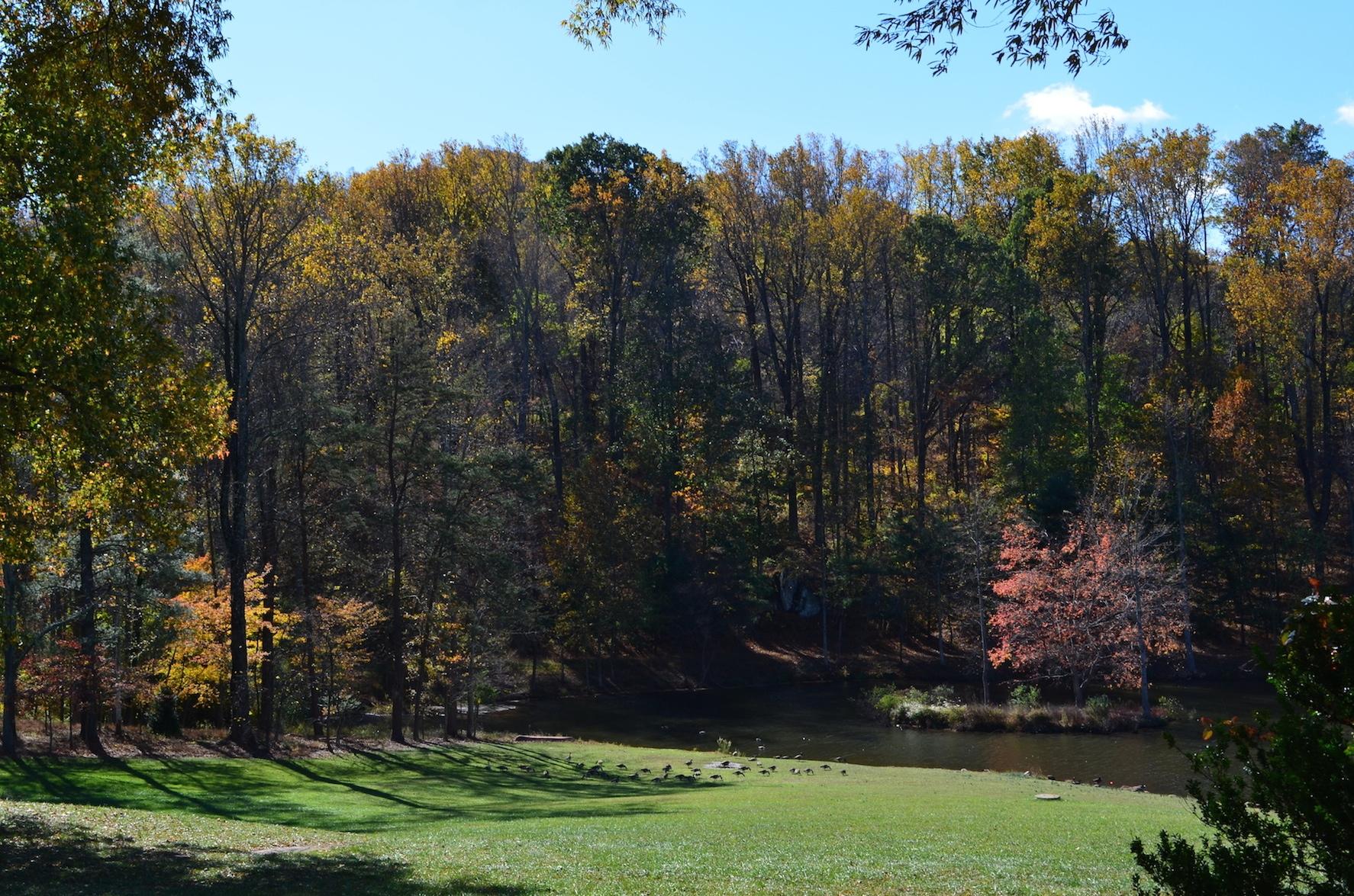 zz Pond from Croquet Lawn Verulam Charlottesville Wedding