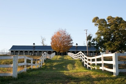 Verulam Horse Barn – website