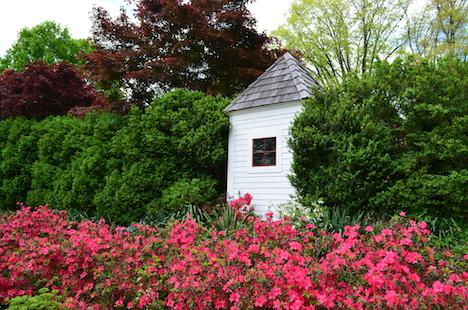 azalea garden website