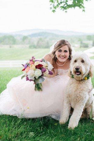 Jessie & The Dog 2