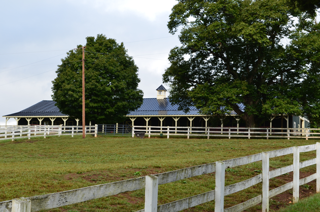 stable-from-lower-barn-verulam
